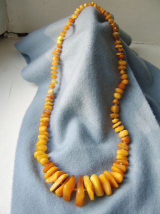 Antik Real Amber Bernstein Necklace Kette Collier Butterscotch Bild