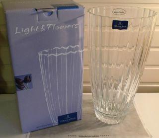 Vase Glas Lilienvase Blumenvase Kristall Villeroy & Boch Light & Flowers Bild