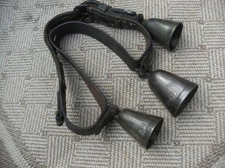 Altes Pferdegeläut,  Glocke,  Schellengurt,  Geschirr Schelle,  Bauer,  Messing,  Eisen Bild