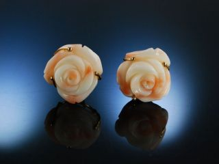 Exquisite Ohrringe Engelshautkoralle Rosen Gold 585 Koralle Ohrstecker BlÜten Bild
