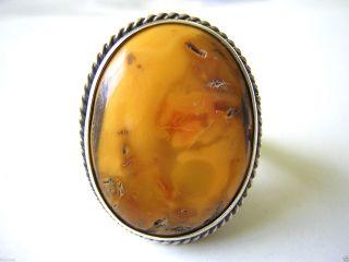 Echt Silber Ring Butterscotch Natur Bernstein Amber Schmuck 11,  5 G Bild