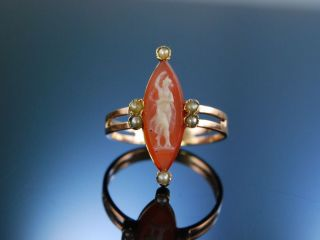 Antiker Ring Hardstone Kamee Gemme Cameo Saatperlen Gold 750 Frankreich Um 1860 Bild