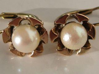 585 Gelb - / Rotgold Perl Ohrringe,  Gold Ohrhänger,  Perlenohrring Ohrschmuck Gold Bild