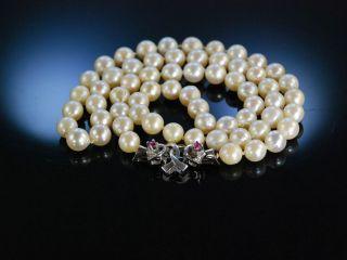 Zuchtperlen Kette Gold 585 Akoyazuchtperlen Diamanten Rubine Perlenkette Um 2005 Bild