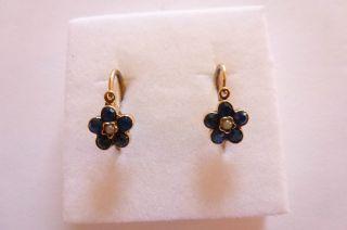 Exclusive Seltene Jugendstil Art Nouveau Ohrringe Gold 585 Vergißmeinnicht Bild