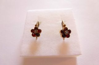 Exclusive Seltene Jugendstil Art Nouveau Ohrringe Gold 585 Vergißmeinnicht Perle Bild