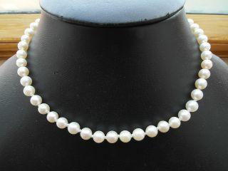 Antikes Perlen - Ketten Collier Kurze Kette,  Verschluss 835 Gepunzt,  Top Bild