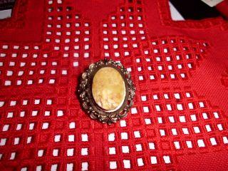 Goldene Bernsteinbrosche,  Butterscotch Bild