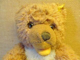 Alter Steiff - Teddy Mit Kleinem Knopf U.  Restfahne. .  - - - - - - - Siehe Bilder Bild