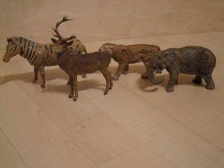 Wildtiere,  4 Stück Bild