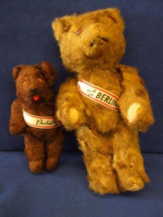Teddy Antik Bär Gruß Aus Berlin 2 Stück Bild
