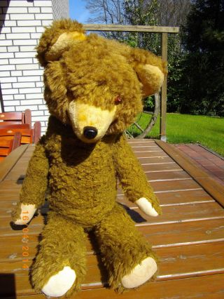 Teddybär Alt Bild
