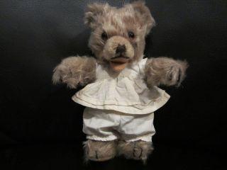Teddybär / Steiff / Ca 18 Cm / Antik Bild