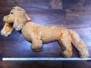 Antik Dackel Lebensgroß Spielzeug Gut Erhalten Süß Bild