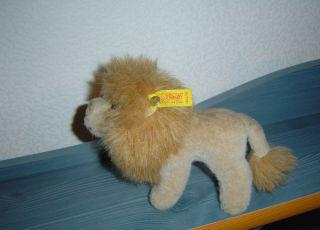 Altes Steiff - Tier Löwe - 50er Jahre Bild