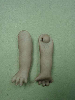 """E137/ Antike Googlyarme """"seesternhände""""biskuitporzellan,  Ca 4,  7 Cm. Bild"""