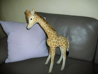 Alte Steiff Giraffe 50cm Geschlossener Mund Mohair Steiff Tier Knopf /fahne Bild