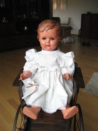 Allte Schildkröt Puppe Nr.  56 Bild