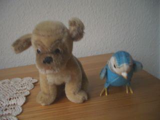 Alte Steiff Tiere - Hund Mopsi - Vogel Wellensittich - Konvolut Bild