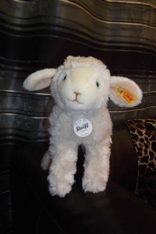 Steiff 073205 Lamby Lamm 22 Stehend Und Noch (war Ein Fehlkauf) Bild