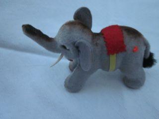 Elefant Vitrinenstück Gut Erhalten Bild