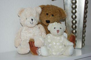 Teddybär,  Teddysammlung Teddy Mit Flügel,  Bärensammlung Bild