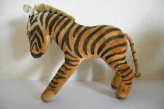 Bezauberndes Antikes Steiff Zebra Bild