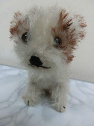 Steiff Hund Molly Junghund 15 Cm H 17 Cm L Bild