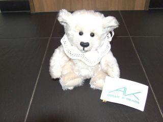 Sammler - Teddy: Teddy Von Ak Dolls & Bears Ca.  1996 Bild
