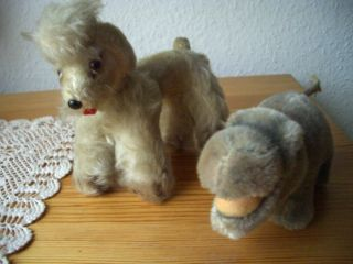 Alte Steiff Tiere - Stofftiere - Nilpferd - Hund Pudel - Konvolut Bild