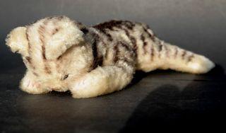 Steiff Katze Floppy 24 Cm Antik Mohair Cat Kitten Teddy Bear Plüschtier Bild