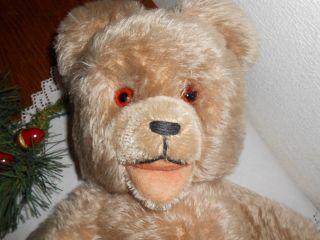 Teddybär Alt Fa.  Hermann 40cm Mohair - Fell,  - Tatzen Offenes Maul Bild