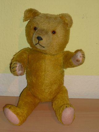 Teddybär Alt Gelenkteddy Teddy Figur Großer Teddy Bild