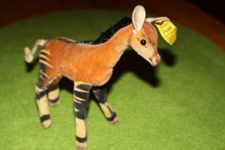 - Rarität Steiff Okapi - - Mit Knopf Und Fahne - Bild