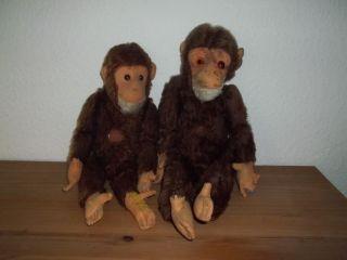2 Sammler Bastler Affen Antik Bild