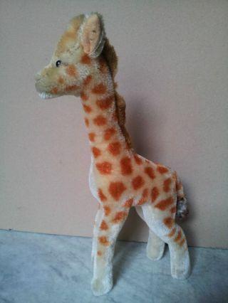 Org.  Steiff Giraffe,  Aus Den 40 - 60er Jahren Bild