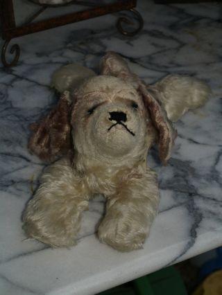 Steiff Hund Floppy Cocky Bild
