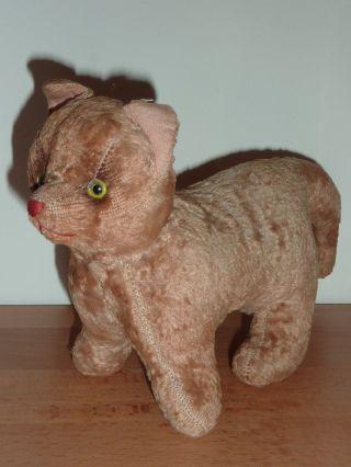 Altes Stofftier Katze Bild