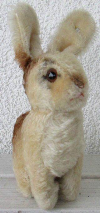 Alter Antiker Steiff Hase Mit Drehbarem Kopf Sehr Gut Erhalten Sammlerstück Bild