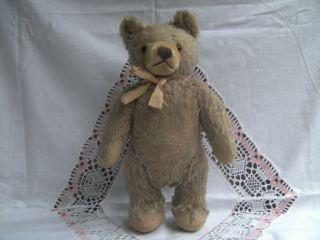 Hermann Teddy Teddybär Schleife Bild