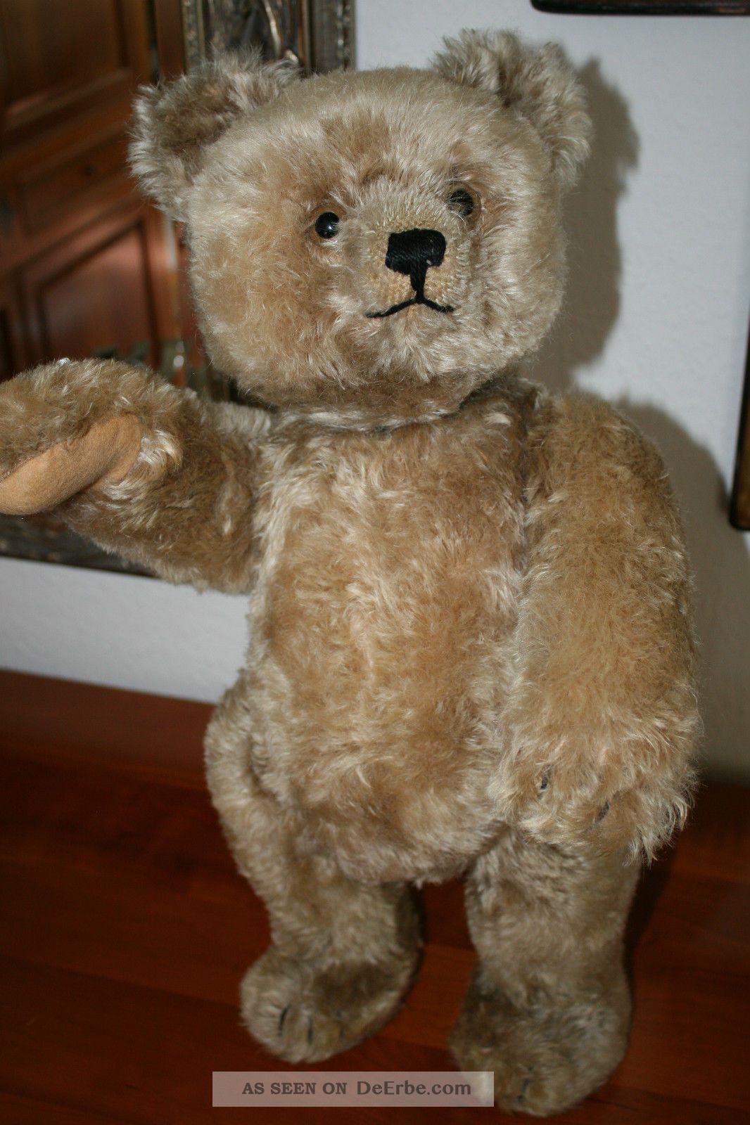 schuco yes no teddyb r mit musikwerk teddy 53 cm. Black Bedroom Furniture Sets. Home Design Ideas