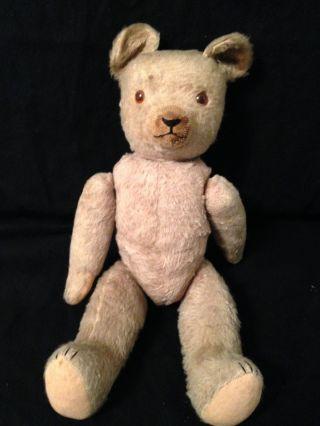 Alter Teddy Dachbodenfund Bild