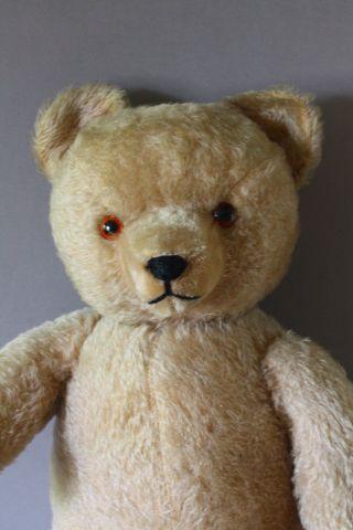 Schöner Alter Mohair Teddy 50er Jahre_ Hermann __ 54 Cm Bild