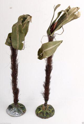 2 Alte Palmen Masse Lineol Elastolin Bild