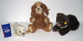 SchÖn 3 Steiff Tiere Hund,  Bär,  Robbe A.  Nachlaß Bild