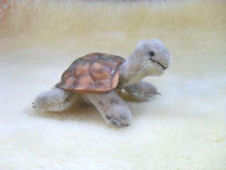 Steiff Schildkröte
