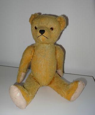 Stofftier Teddybär Marke Berg Ende 1950er Anfang 1960er Jahre Antik Bild