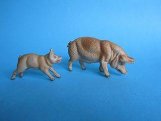 Großes Und Kleines Schwein Bild