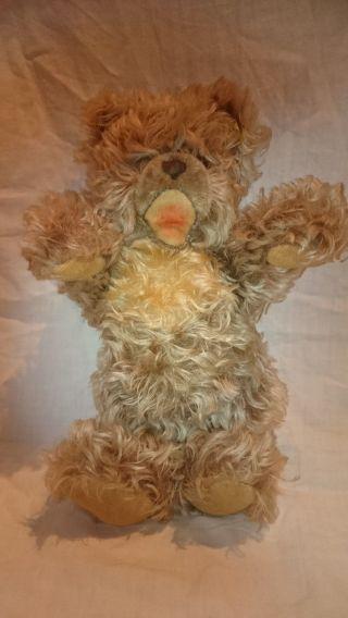 Steiff Teddy 0300/28 Ca 30cm Mit Knopf Und Fahne Bild