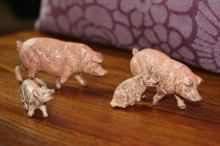 Schweine Familie,  4 Stück,  Elastolin,  Rar,  Natur,  Figur,  Tiere Bild